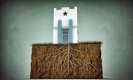 Piccola casa con le grandi radici Fotografia Stock