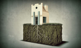 Piccola casa con le grandi radici Fotografia Stock Libera da Diritti