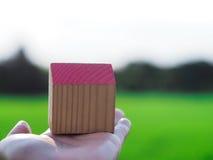 Piccola casa di legno a disposizione davanti al giacimento del riso immagine stock libera da diritti