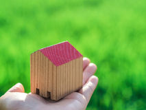 Piccola casa di legno a disposizione davanti al giacimento del riso fotografia stock libera da diritti