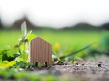 Piccola casa di legno sul pavimento davanti al giacimento del riso Immagine Stock Libera da Diritti