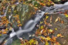 Piccola cascata Immagini Stock