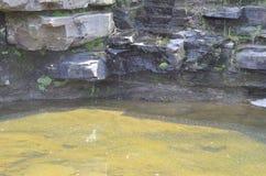 Piccola cascata Fotografie Stock