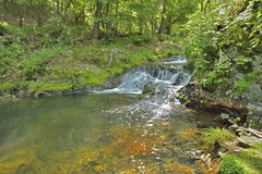 Piccola cascata 3 Immagini Stock