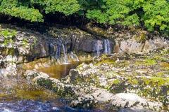 Piccola cascata con acqua bianca Fotografia Stock
