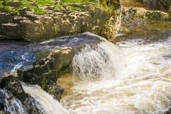 Piccola cascata con acqua bianca Immagine Stock