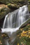 Piccola cascata del terreno boscoso Fotografia Stock