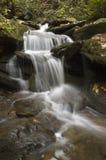 Piccola cascata del terreno boscoso Immagini Stock Libere da Diritti