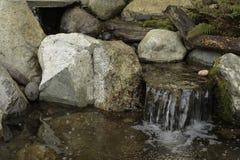 Piccola cascata della caratteristica dell'acqua immagine stock