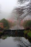 Piccola cascata della corrente un giorno di inverni nebbioso Fotografia Stock