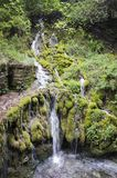 Piccola cascata in Italia del Nord Immagini Stock
