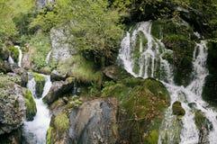 Piccola cascata in Italia del Nord Immagini Stock Libere da Diritti