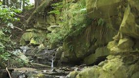 Piccola cascata in montagne video d archivio