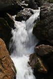 Piccola cascata in montagne di Cerna, Romania Immagini Stock