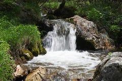 Piccola cascata in montagne di Cerna, Romania Immagine Stock Libera da Diritti