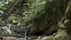 Piccola cascata in montagne registrate al rallentatore archivi video