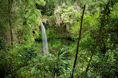 Piccola cascata nel parco nazionale ambrato della montagna Immagine Stock