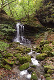 Piccola cascata nella foresta di autunno Fotografia Stock Libera da Diritti