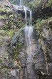 Piccola cascata nella sosta Fotografia Stock