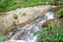 Piccola cascata o cascata nella foresta Fotografia Stock