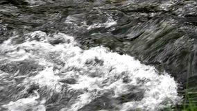 Piccola cascata piacevole sul flusso della montagna stock footage