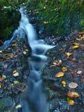 Piccola cascata in pieno di acqua dopo pioggia.   Fotografia Stock