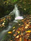 Piccola cascata in pieno di acqua dopo pioggia.   Fotografie Stock