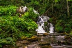 Piccola cascata precipitante a cascata Fotografia Stock