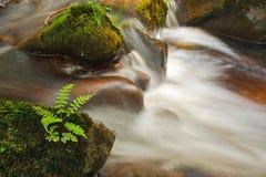 Piccola cascata sul fiume Wharfe Immagine Stock