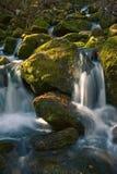 Piccola cascata sulla montagna, insenatura della foresta Fotografie Stock Libere da Diritti
