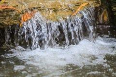 Piccola cascata in un giardino Immagini Stock Libere da Diritti