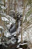 Piccola cascata in una foresta di inverno Fotografia Stock Libera da Diritti