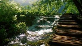 Piccola cascata vicino al percorso di legno archivi video