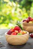 Piccola ciliegia della frutta brasiliana organica del Acerola Immagine Stock Libera da Diritti