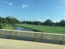 Piccola città dell'erba del fiume Fotografie Stock Libere da Diritti