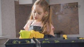 Piccola cura del giardiniere di divertimento per le piante Ragazza sveglia del piccolo bambino che pianta le piantine Concetto, n video d archivio