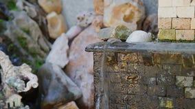 Piccola fontana artificiale con chiara acqua stock footage