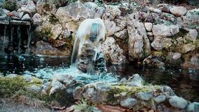 Piccola fontana decorativa nell'iarda stock footage