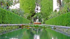 Piccola fontana in parco, primo piano