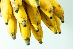 Piccola frutta gialla della banana del Kerala Immagini Stock Libere da Diritti