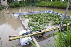 Piccola gabbia del pesce Fotografia Stock
