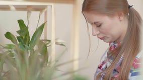 Piccola impresa Una ragazza in una camicia di plaid si è impegnata in un fiore nel suo negozio La ragazza di fiore sta vicino all video d archivio