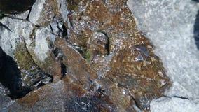 Piccola insenatura degli scorrimenti dell'acqua glaciali sopra la pietra stock footage
