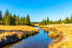 Piccola insenatura della montagna che serpeggia verso la metà dei prati e del giorno soleggiato della foresta con cielo blu e le  immagine stock libera da diritti