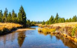 Piccola insenatura della montagna che serpeggia verso la metà dei prati e del giorno soleggiato della foresta con cielo blu e le  fotografie stock libere da diritti