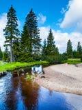 Piccola insenatura della montagna in mezzo ai prati verdi ed alla foresta attillata, montagne di Jizera, repubblica Ceca immagine stock libera da diritti