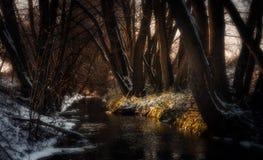 Piccola insenatura durante gli ultimi giorni dell'inverno fotografie stock libere da diritti