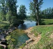 Piccola insenatura stretta con chiara acqua fra il terreno boscoso Immagine Stock Libera da Diritti