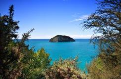 Piccola isola disabitata fuori dalla costa della Nuova Zelanda Immagini Stock Libere da Diritti