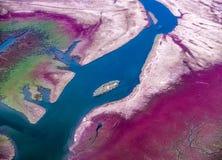 Piccola isola nel delta del fiume di Axios Fotografia Stock Libera da Diritti